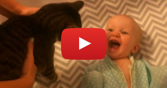 This Baby Loves the House Cat