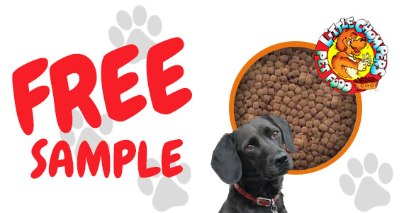 Free Sample of Little Chompers Dog Food