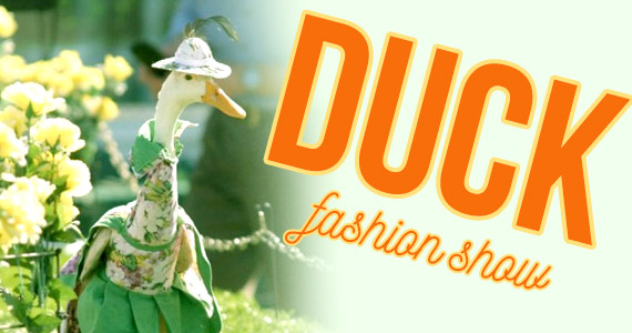 Australia Has a Duck Fashion Show & It's Kind of Awesome