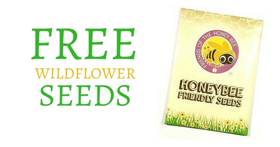 Free Just Bee Wildflower Seeds