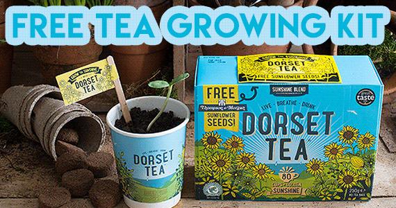 Free Dorset Tea Growing Kit