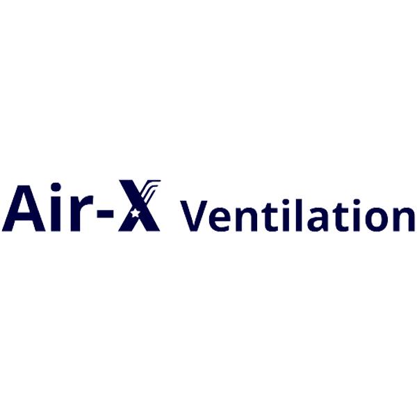 Air-X IVS