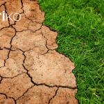 cambio-climatico-sector-inmobiliario