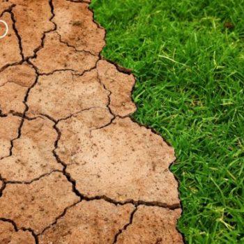 cambio climático sector inmobiliario