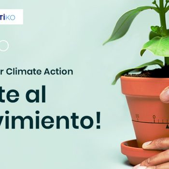 tomar acción climática