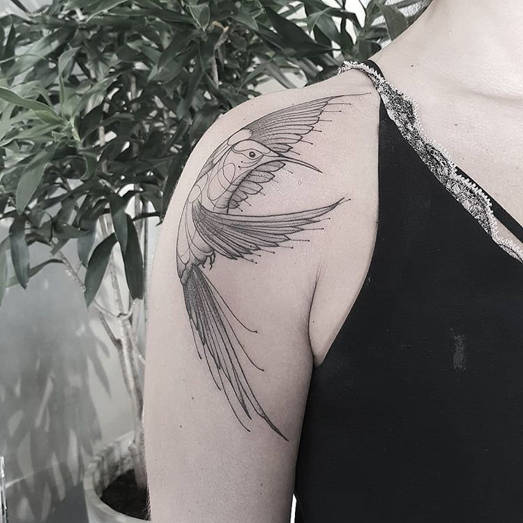 Bird shoulder tattoo from mcapocci