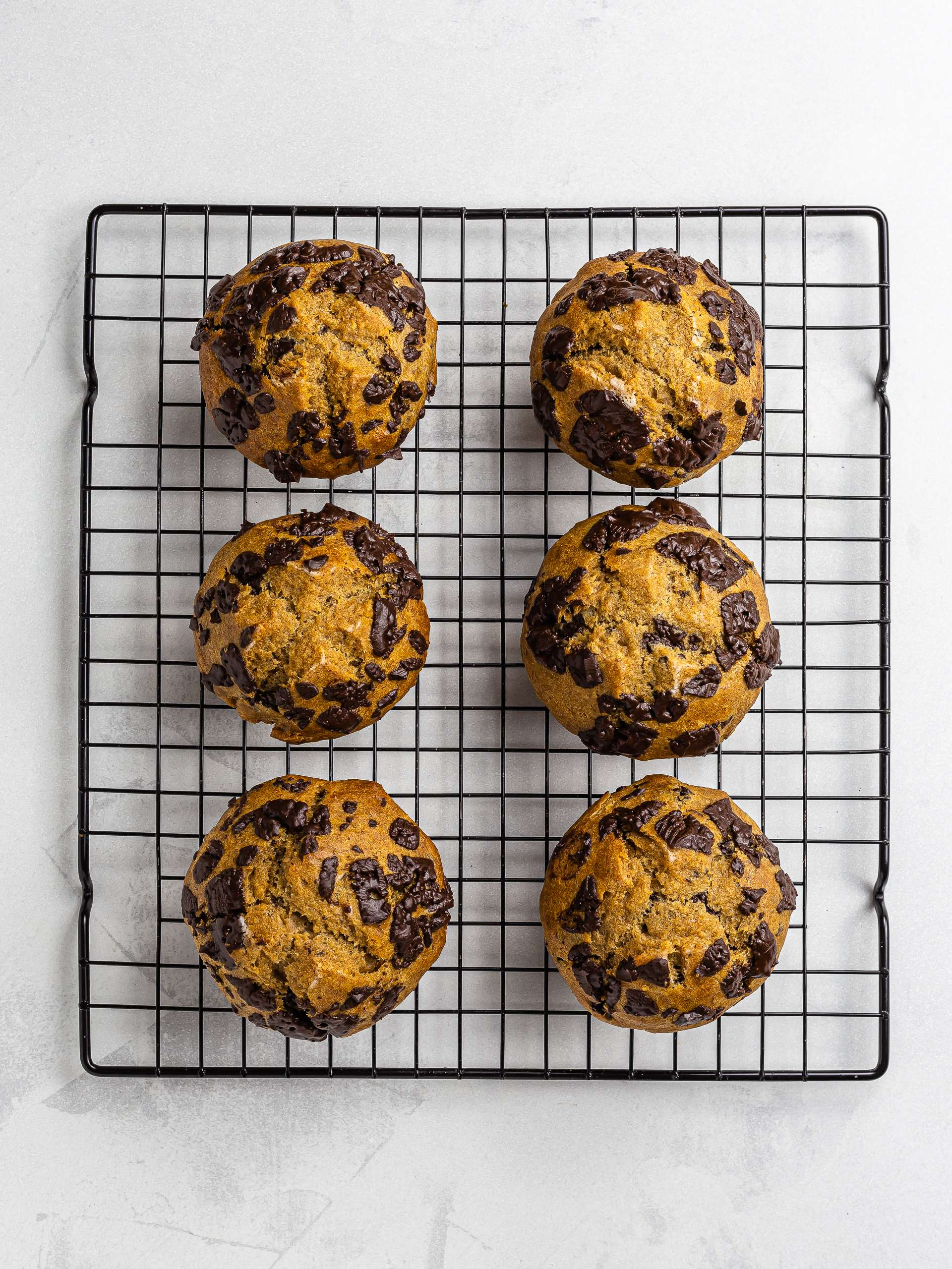 baked chocolate chips plantain muffins