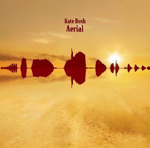 1181-aerial.jpg
