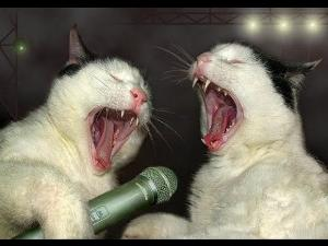 singinganimals.jpg