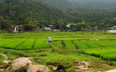 Hoi An Rice Paddy Half-Day Tour by Bicycle or Van