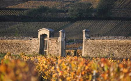 Dijon: Best of Burgundy - Private Tour w/ 6 Grands Crus