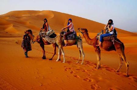 Atlas Mountains and Cedar Forest: Merzouga Guided Day Tour from Fez