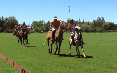 Buenos Aires: Half-Day Trip to a Polo Match