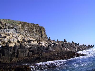 Bruny Island Wilderness Coast