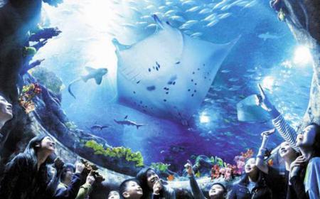 Hong Kong Ocean Park 1-Day Entry Ticket