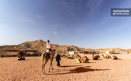 Sunset Desert Safari Trip by Quad Runner from Hurghada