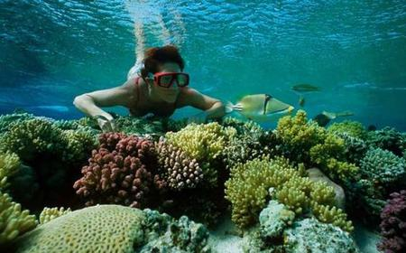 From Hurghada: Giftun Island Snorkeling Experience