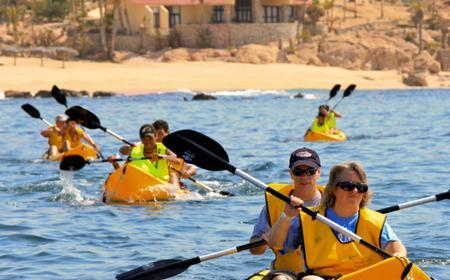 Snorkel & Sea Adventure in Cabo San Lucas
