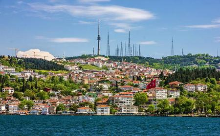 Istanbul: Half-Day Panoramic Tour and Maiden's Tower