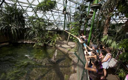Cairns Zoom & Wildlife Dome Entry Ticket