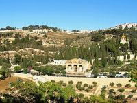 Mount of Olives Old City and the Dead Sea Tour from Jerusalem