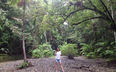 Daintree National Park: Full-Day 4WD Tour from Cairns