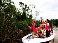 Klias Wetlands River Safari