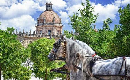 Jerez: Historic Center Tour