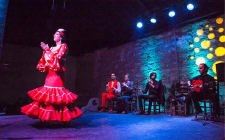 Flamenco day trip with Show and Tapas