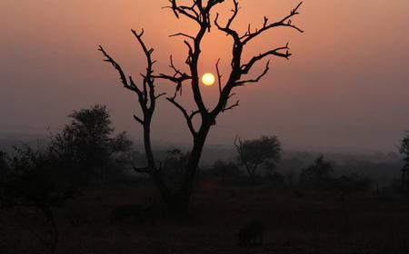 Pilanesberg National Park: 2-Day Private Camping Safari