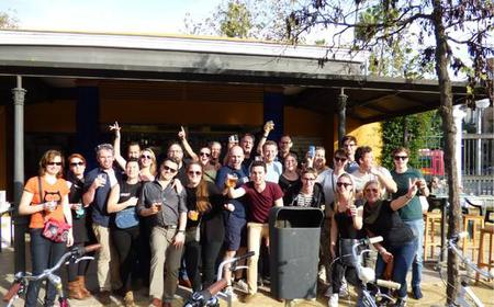 Seville: 2-Hour Private Group Bike Tour