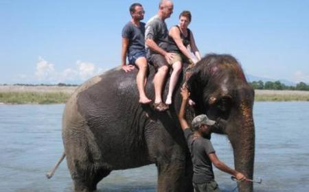 3-Day Tour of Chitwan National Park