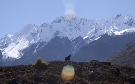 Langtang Valley 16-day trek from Kathmandu