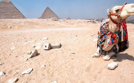Giza Pyramids: Half-Day Horse and Camel Riding