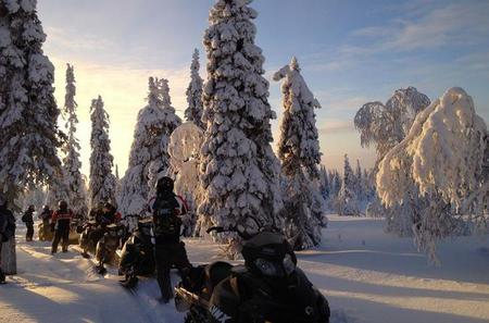 Arctic Snowmobile Tour to the Wilderness Lodge including Lunch by Campfire