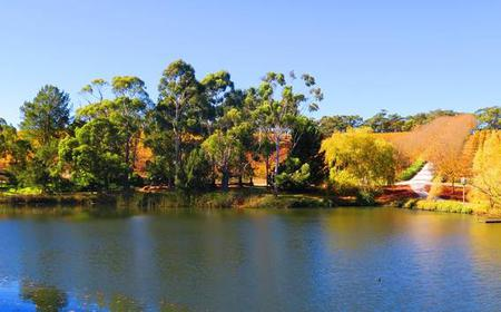 Adelaide Hills Luxury Wine Tour: Small Group