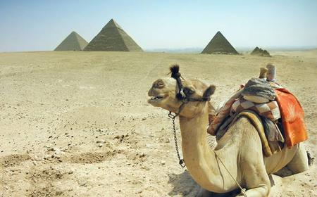 From Hurghada: Full-Day Tour to Cairo by Bus