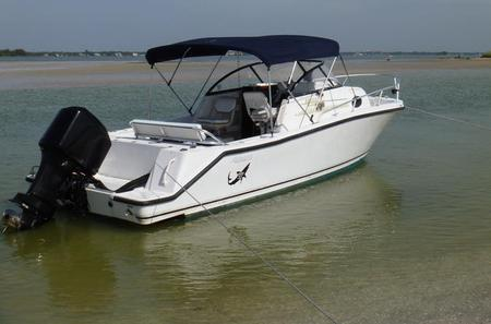 Private Sunset Tour in Palm Harbor