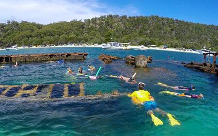 Moreton Island Dolphin and Snorkel Cruise: Self Drive