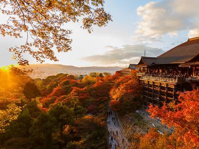 Kyoto Afternoon Tour - Heian Jingu Shrine Kiyomizu-dera Temple and Sanjusangen-do Temple