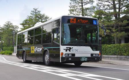 Kyoto Night Cruise Bus Tour