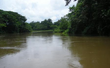 Caño Negro Wildlife Refuge Boat Tour along Rio Frio