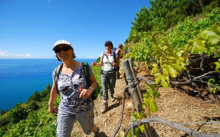 Full-Day Hiking and Wine Tour of Cinque Terre