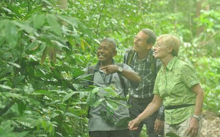 Langkawi Rainforest Day-Tour: Malaysian Jungle Trekking
