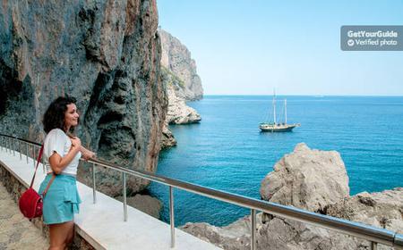 Scenic Full-Day Tour of Mallorca