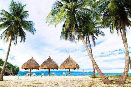 Pamilacan Island and Balicasag Island Day Trip from Tagbilaran City