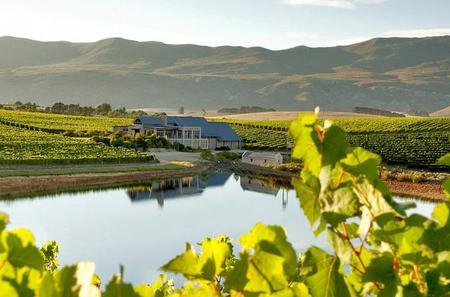 Full-Day Hemel-en-Aarde Wine Region Private Tour from Cape Town
