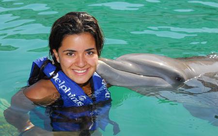 Dolphin Interax at Delphinus Xel-Ha
