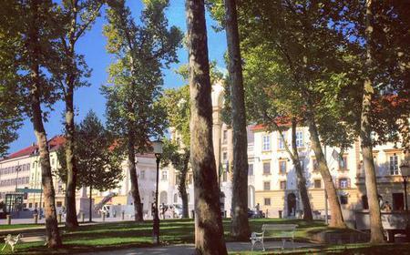 Ljubljana Lights and Delights Walking Tour