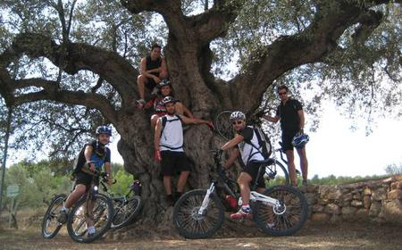 Mountain Biking and Trekking Tour in Sa Carrossa